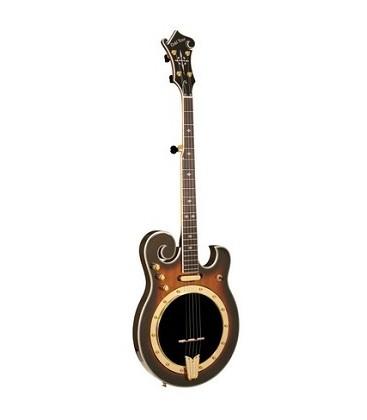 Gold Tone EBM 5 Plus Electric Banjo