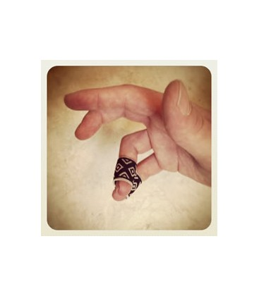 Picks - Pickin' Pal Finger Lock