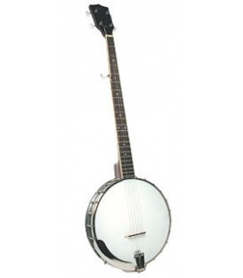 Rover Banjo - RB30 - Good Deal for Beginner Banjo
