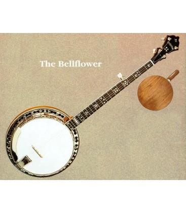 Stelling Banjos on Sale at BanjoTeacher.com!