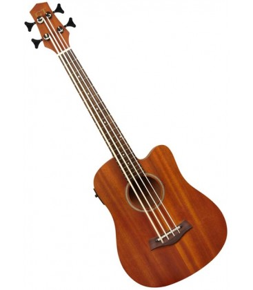 Gold Tone MicroBass Acoustic/Electric Bass Guitar - Fretless