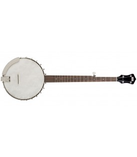 Recording King Banjo - Madison RK - OT 25 - Clawhammer Banjo