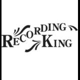 recording king banjos