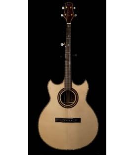 5-String Guitar Banjo