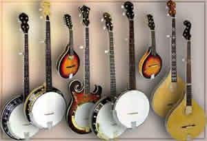 Goldtone Banjos